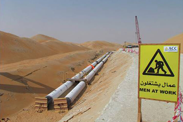 Liwa Strategic Water Storage and Recovery System